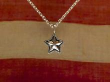 Hybrid Star Necklace
